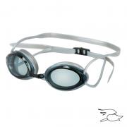 gafa leader sailfish smoke-mirror-silver